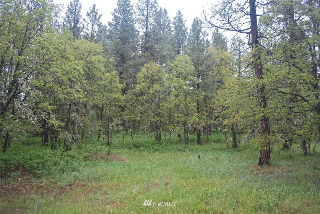 0 Highway 97, Goldendale, Washington 98620, ,Land,For Sale,Highway 97,NWM1608875