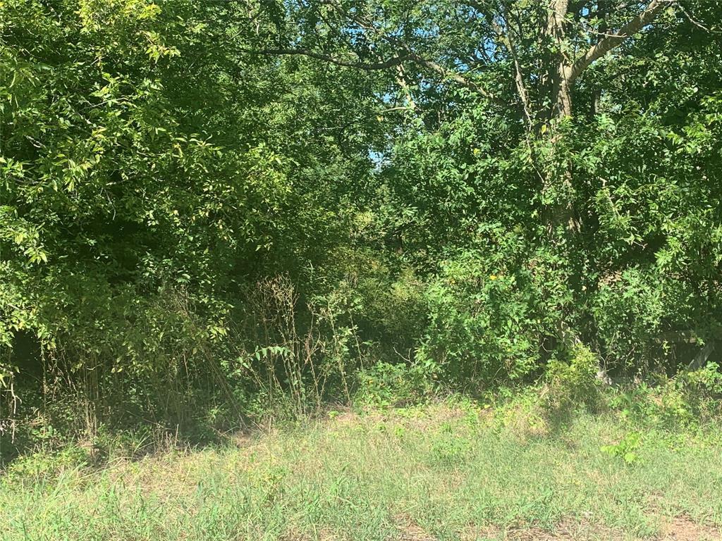 Bogata, Texas 75417 , Lots & Acreage,For Sale,FM 271,14332781