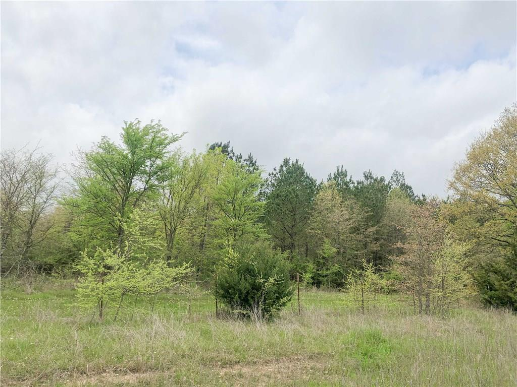 Avery, Texas 75554 , Lots & Acreage,For Sale,CR 4640,14118785