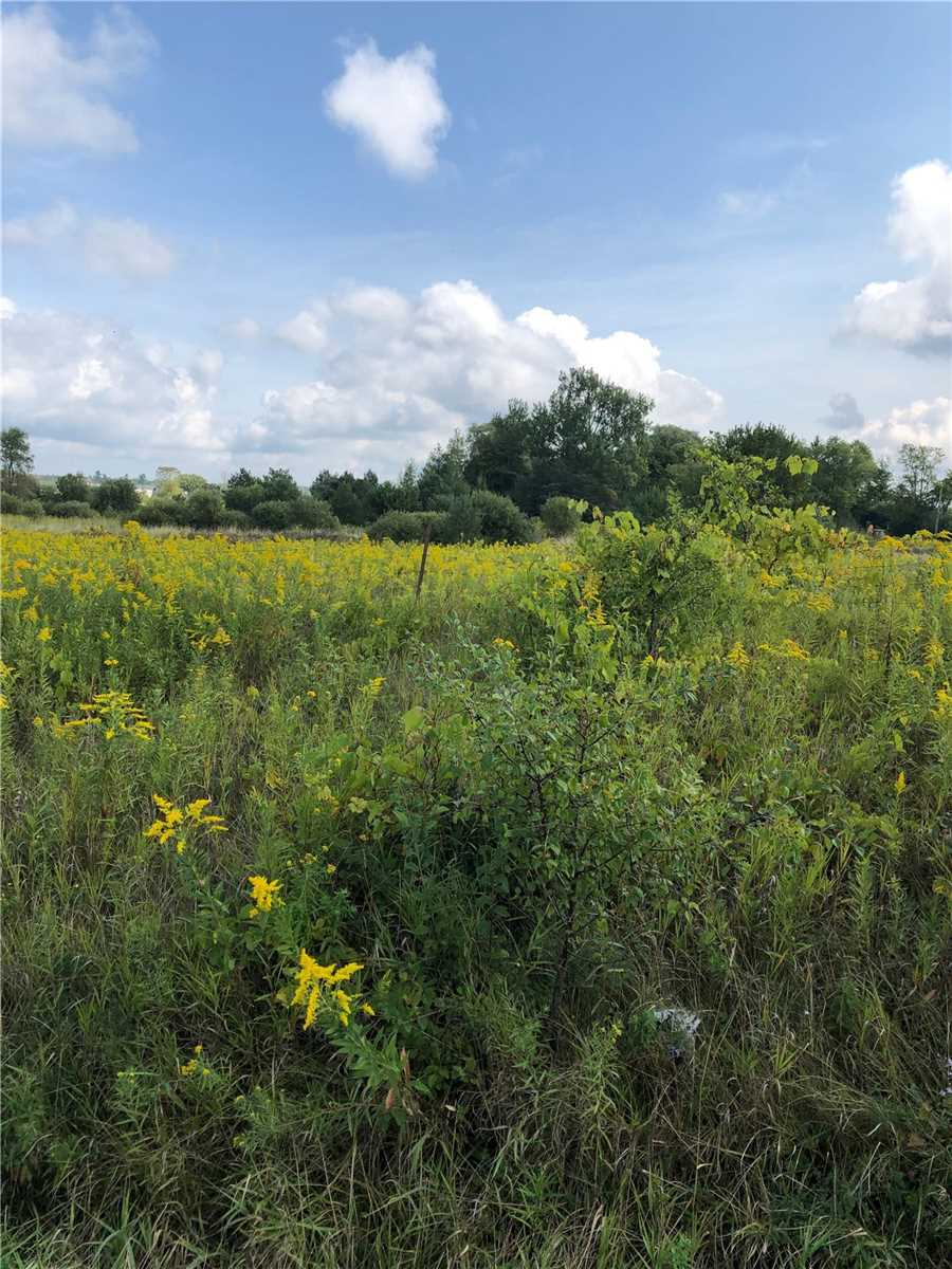 15123 Woodbine Ave, Whitchurch-Stouffville, Ontario L0H1G0, ,Land,For Sale,Woodbine,N4577644