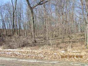 L605 Club House Dr, Woodland, Wisconsin 53941-9791, ,Lots & Acreage,For Sale,Club House Dr,1823988