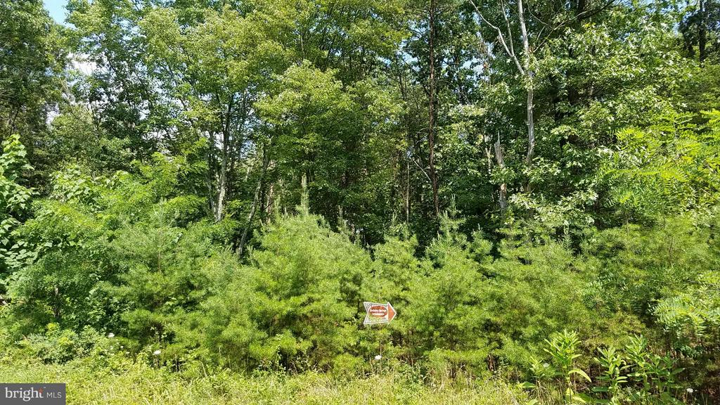 9 SILAGE LANE, BERKELEY SPRINGS, WV 25411, ,Land,For Sale,SILAGE,1000167701