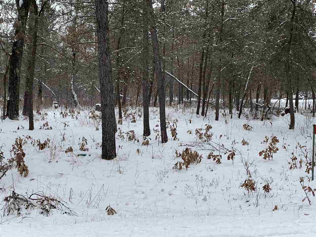 1584 Kingswood Tr, Rome, Wisconsin 54457, ,Lots & Acreage,For Sale,Kingswood Tr,1900001