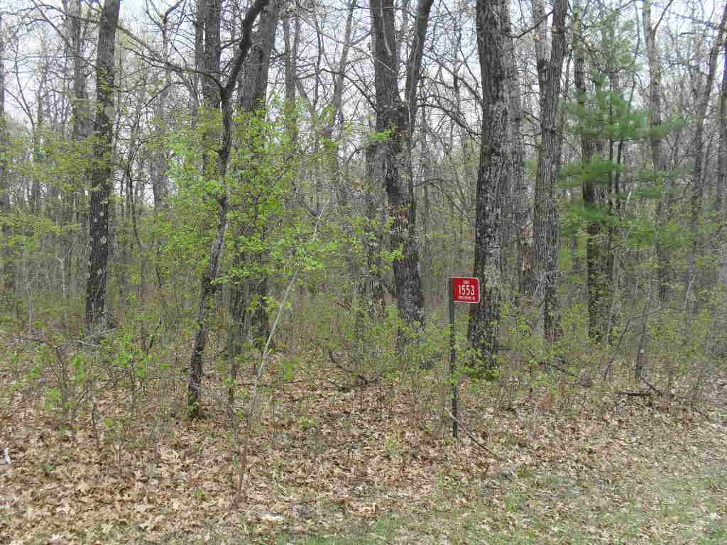 1553 Kingswood Tr, Rome, Wisconsin 54457, ,Lots & Acreage,For Sale,Kingswood Tr,1745573