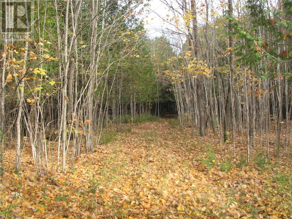 CARLYON Line, Severn, Ontario L3V6H4, ,For Sale,CARLYON,160797