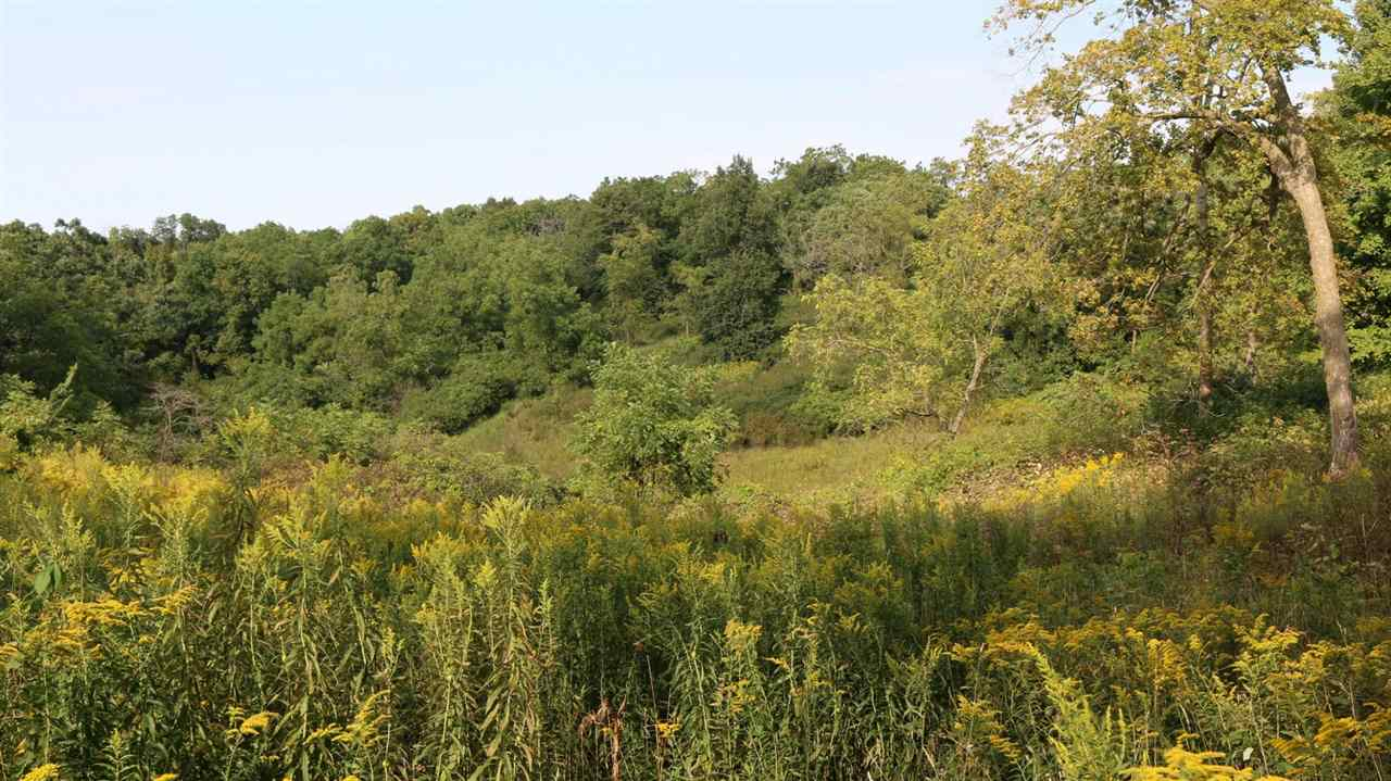 480 Ac County Road Q, Dodgeville, Wisconsin 53533, ,Lots & Acreage,For Sale,County Road Q,1875945