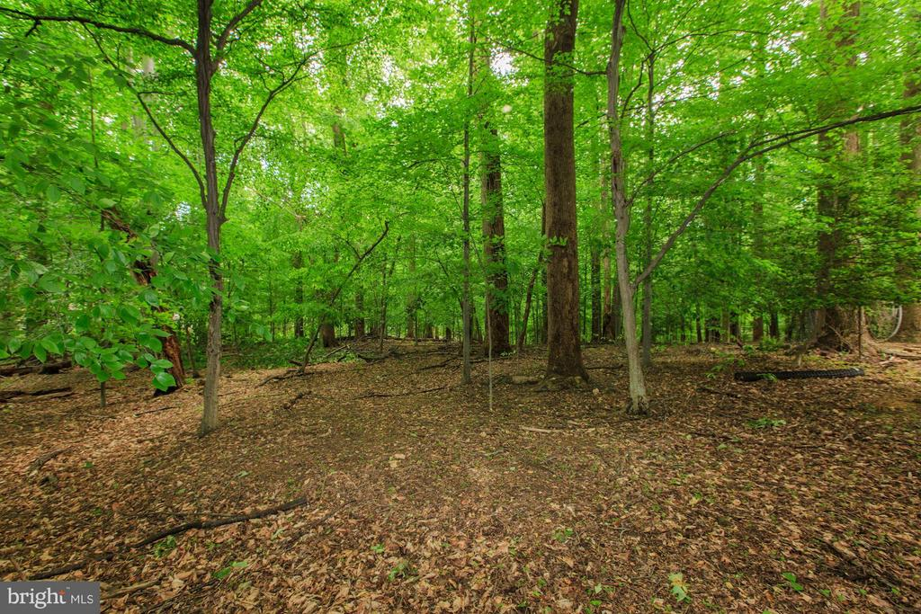 PICASSO LANE, POTOMAC, MD 20854, ,Land,For Sale,PICASSO,1001804550