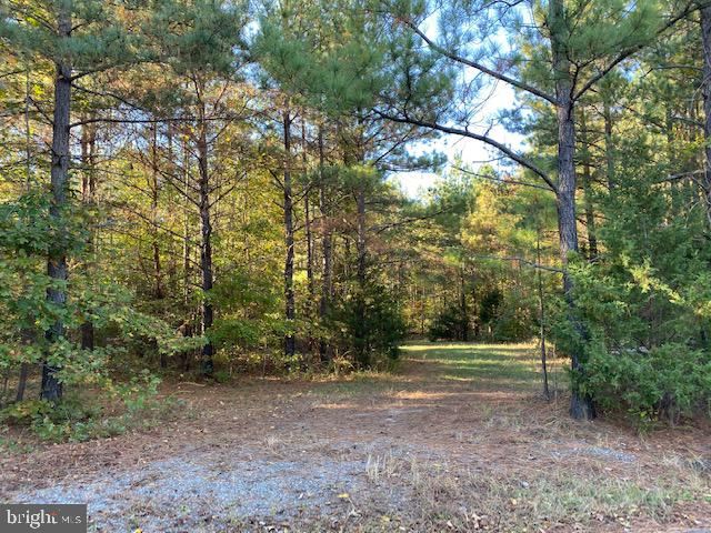 SORRELL ROAD, BOWLING GREEN, VA 22427, ,Land,For Sale,SORRELL,VACV121132