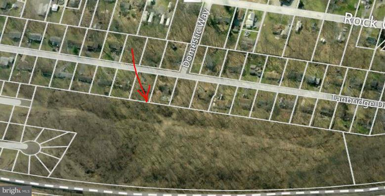 CORAL BERRY DRIVE, MARTINSBURG, WV 25403, ,Land,For Sale,CORAL BERRY,1000194803